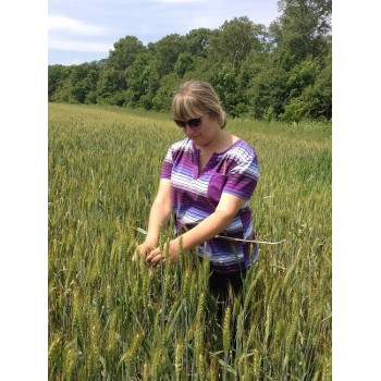 Определение биологической урожайности 47d82