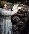 анализ картофеля 38a08
