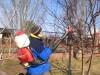 работы в саду 768c1