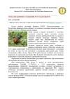 21. хлебные жуки 1 page 0001 d3df5
