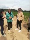 Деревягина М.К., ведущий научный сотрудник отдела защиты растений картофеля ВНИИКХ