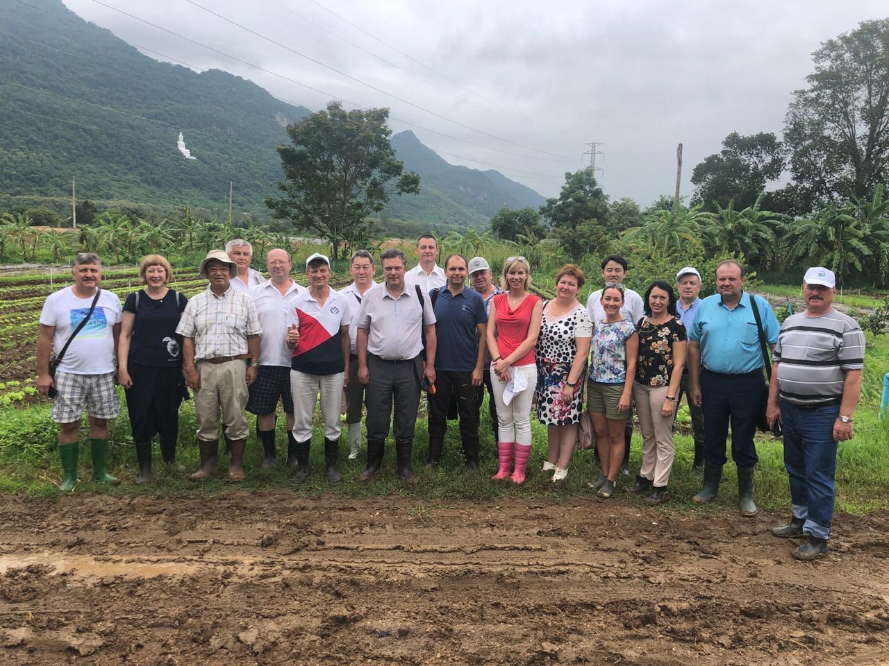 органическое земледелие Япония горы