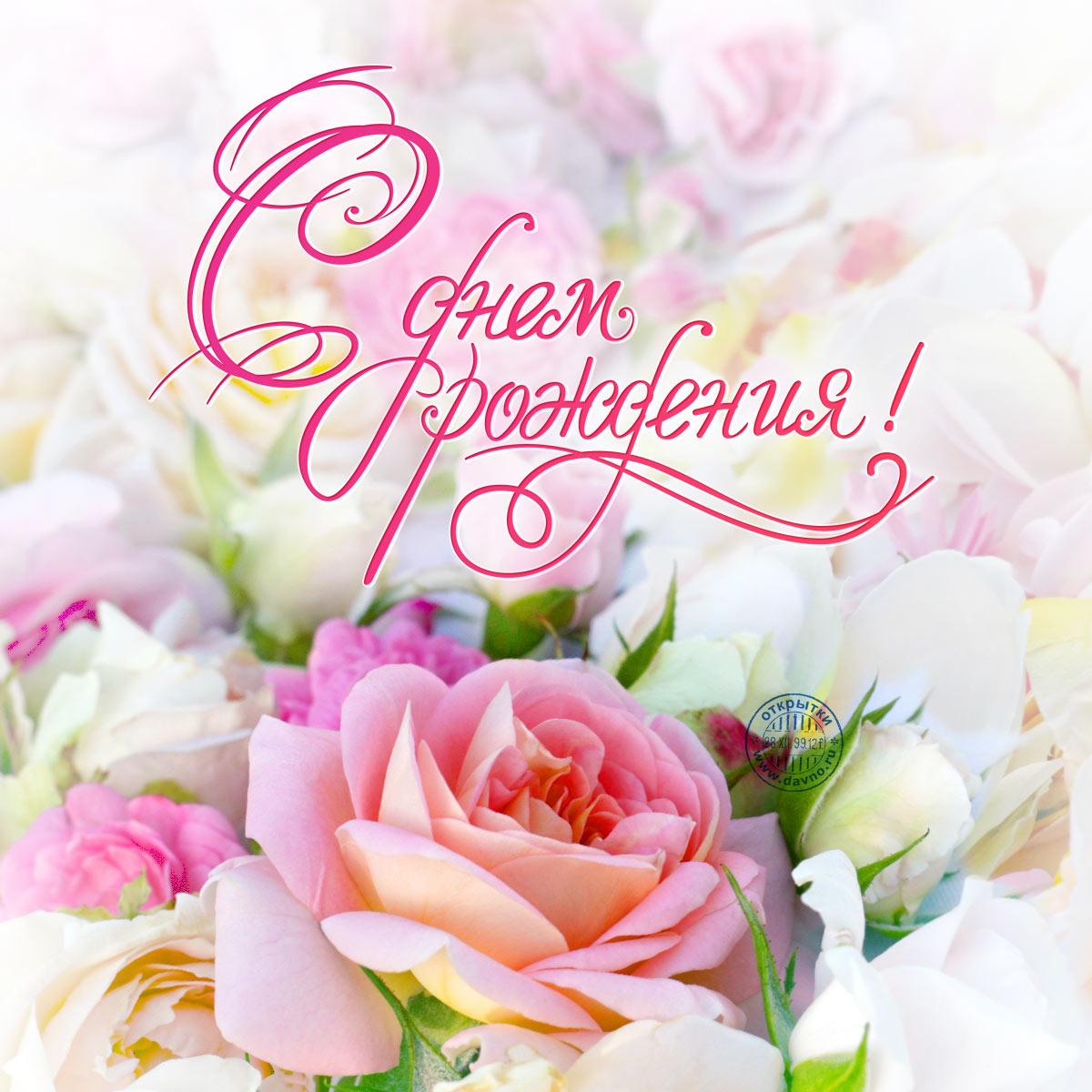 Поздравление с днем роз